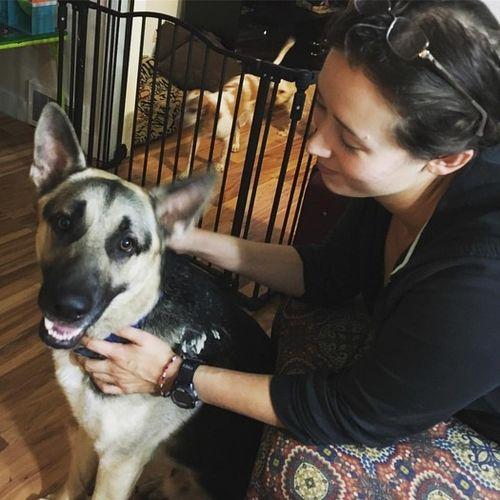 Pet Care Provider Jillian B Gallery Image 1