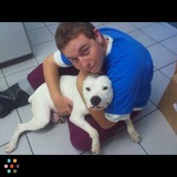 Dog Walker, Pet Sitter in Fort Pierce