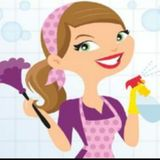 Housekeeper, House Sitter in Rochester