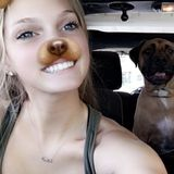 Interested In Daytona Beach Pet Sitting Professional Jobs