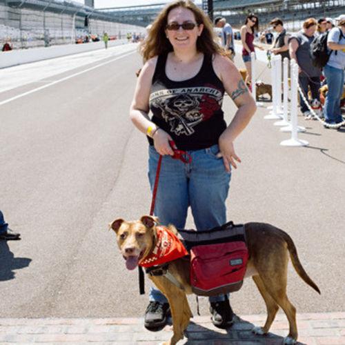 Pet Care Provider Helen M's Profile Picture
