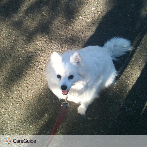 Pet Care Provider Amanda Bragg's Profile Picture