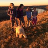 Family, Pet Care, Homework Supervision in Edmonton