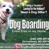 Dog Walker, Pet Sitter in Germantown