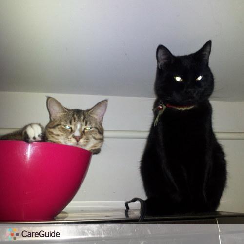 Pet Care Provider Oksana N's Profile Picture