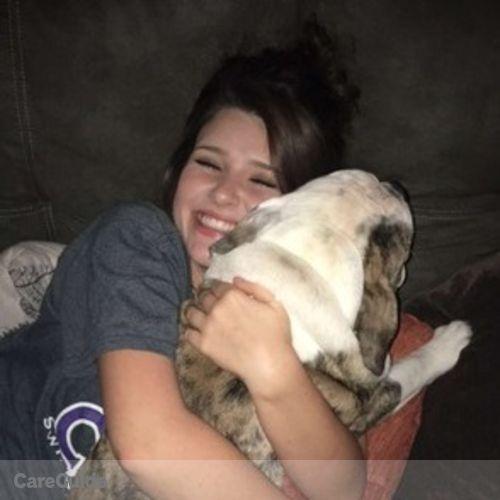 Pet Care Provider Abigail K's Profile Picture