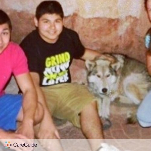 Pet Care Provider Dennis C's Profile Picture