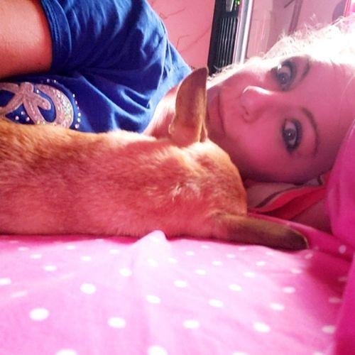 Pet Care Provider Jennifer C's Profile Picture