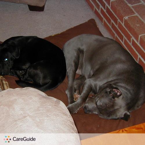 Pet Care Provider Marisa Cartier's Profile Picture