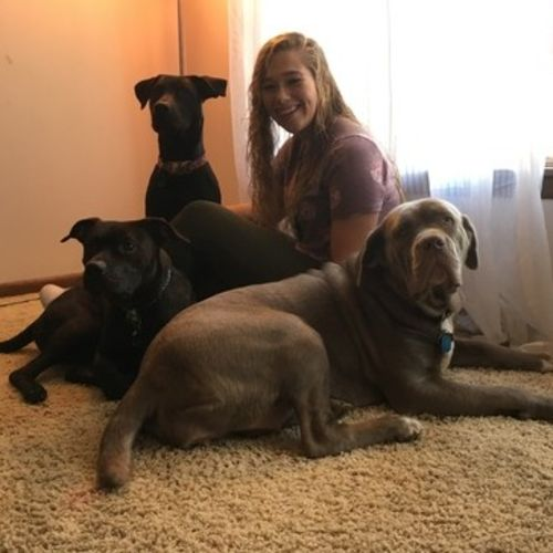 Pet Care Provider Shailyn Benbrook's Profile Picture