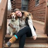 Animal lover looking to love your animals like my own!