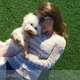Dog Walker, Pet Sitter in Sherman Oaks