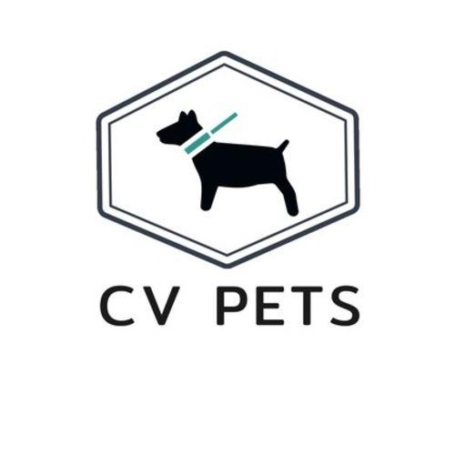 Pet Care Provider Jennifer M Gallery Image 2
