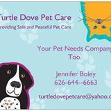 Turtle Dove Pet Care