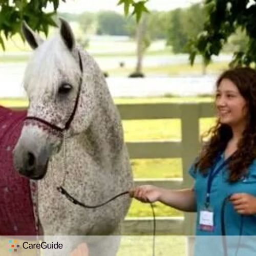 Pet Care Provider Lauren Hammer's Profile Picture