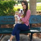 Deerfield Beach Dog Sitting Professional Searching for Work, 10 years of experience.