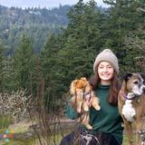 Dog Walker, Pet Sitter in Victoria