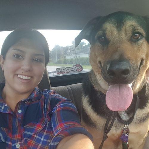 Pet Care Provider Tiffany Ossa's Profile Picture