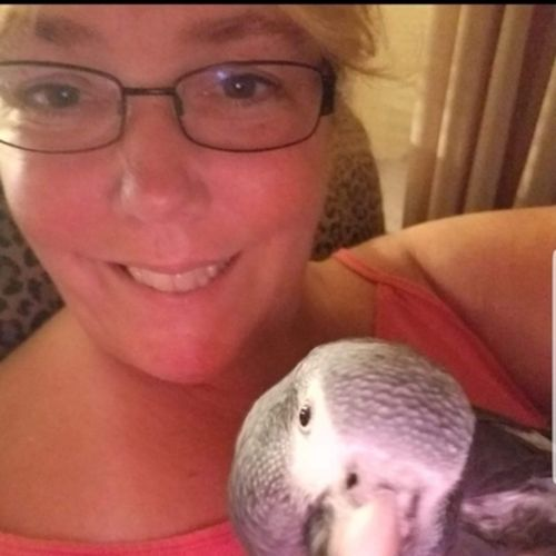 Pet Care Provider Kim Z's Profile Picture