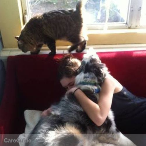 Pet Care Provider Virginia L's Profile Picture