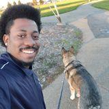 For Hire: Skilled Dog Walker in Hayward