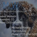 Needing pet care for the holidays? M/W Pet Services is ready for you!