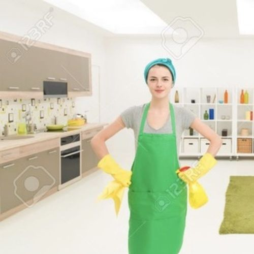 Housekeeper Provider The Perfect Clean's Profile Picture
