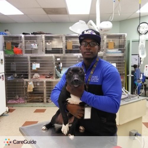 Pet Care Provider Damelle Morgan's Profile Picture