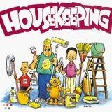 Housekeeper, House Sitter in Atlanta