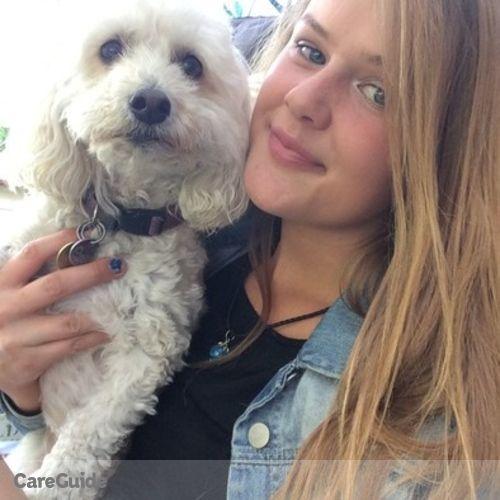 Pet Care Provider Madison Daniel's Profile Picture