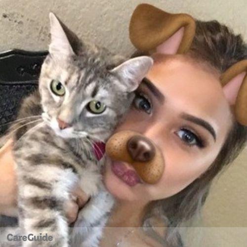 Pet Care Provider Justin N's Profile Picture