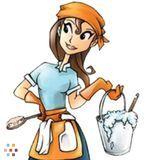 Housekeeper, House Sitter in Alexandria