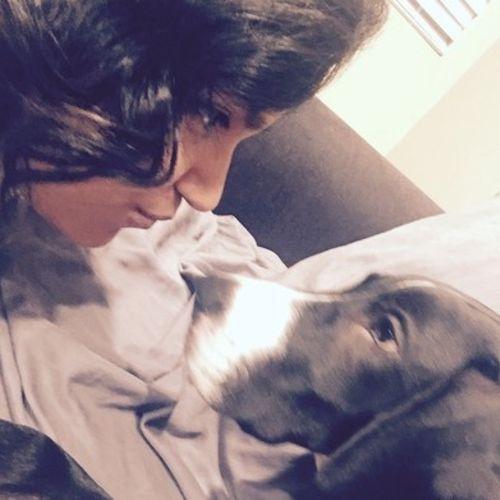 Pet Care Provider Claudia Coldivar Gallery Image 2