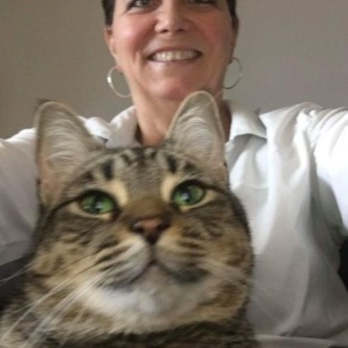 House Sitter Provider Tracey M's Profile Picture