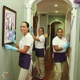Housekeeper, House Sitter in Newark