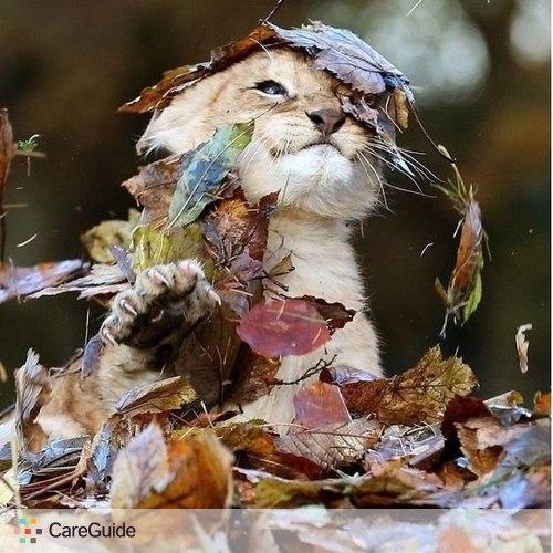 Pet Care Provider Alina Balashova's Profile Picture