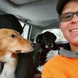 WALK Dog Services at DogsofStratford