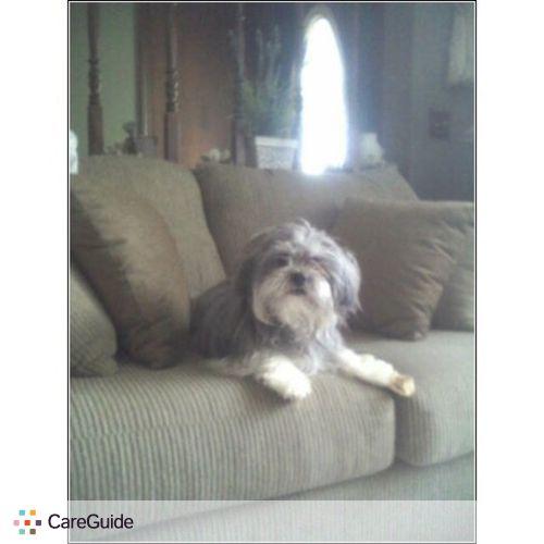 Pet Care Provider Tracy Daggett's Profile Picture