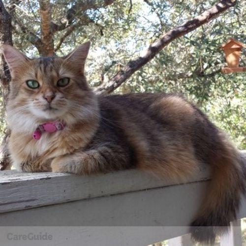 Pet Care Provider Sharon O'Connell's Profile Picture