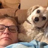 I am an excellent. Pet care provider