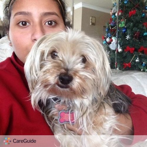 Pet Care Provider Sabrina Mezher's Profile Picture
