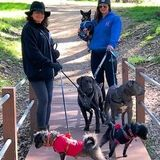 My daughter and I are a great team as professional pet sitters and dog walkers in southwest Escondido and Rancho Santa Fe