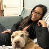 Los Gatos House and Pet Sitter Interested In Being Hired