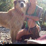 Dog Walker, Pet Sitter in Wasilla