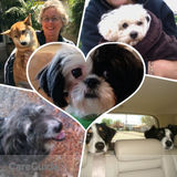 RELAX and ENJOY Your Time Away...House Sitter Extraordinaire!