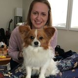 Passionate Groton Professional Petsitter Available For Work in Massachusetts (Walking, Drop-In and Overnight)