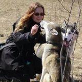 Dog Walker - Waterloo ON (Beechwood / Maple Hills Area)