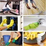 House Cleaning Company, House Sitter in Arlington