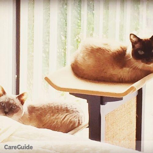 Pet Care Provider Furever Friends's Profile Picture