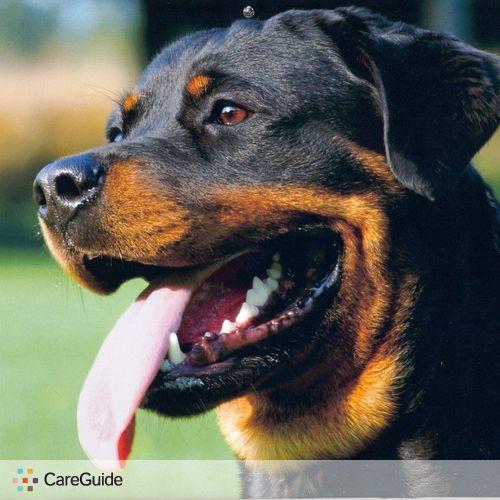 Pet Care Provider Harry S's Profile Picture